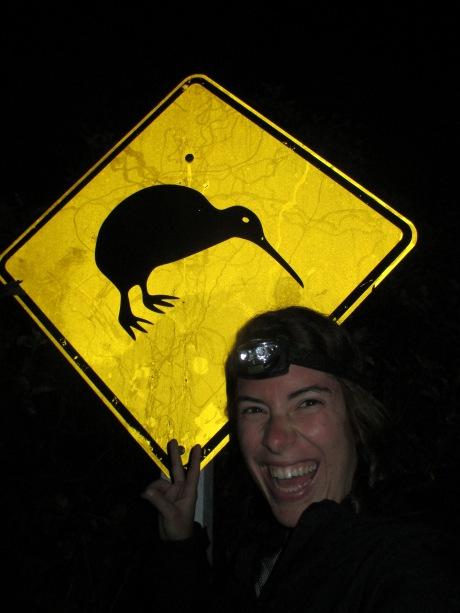 Kiwi Birds: The Real Deal