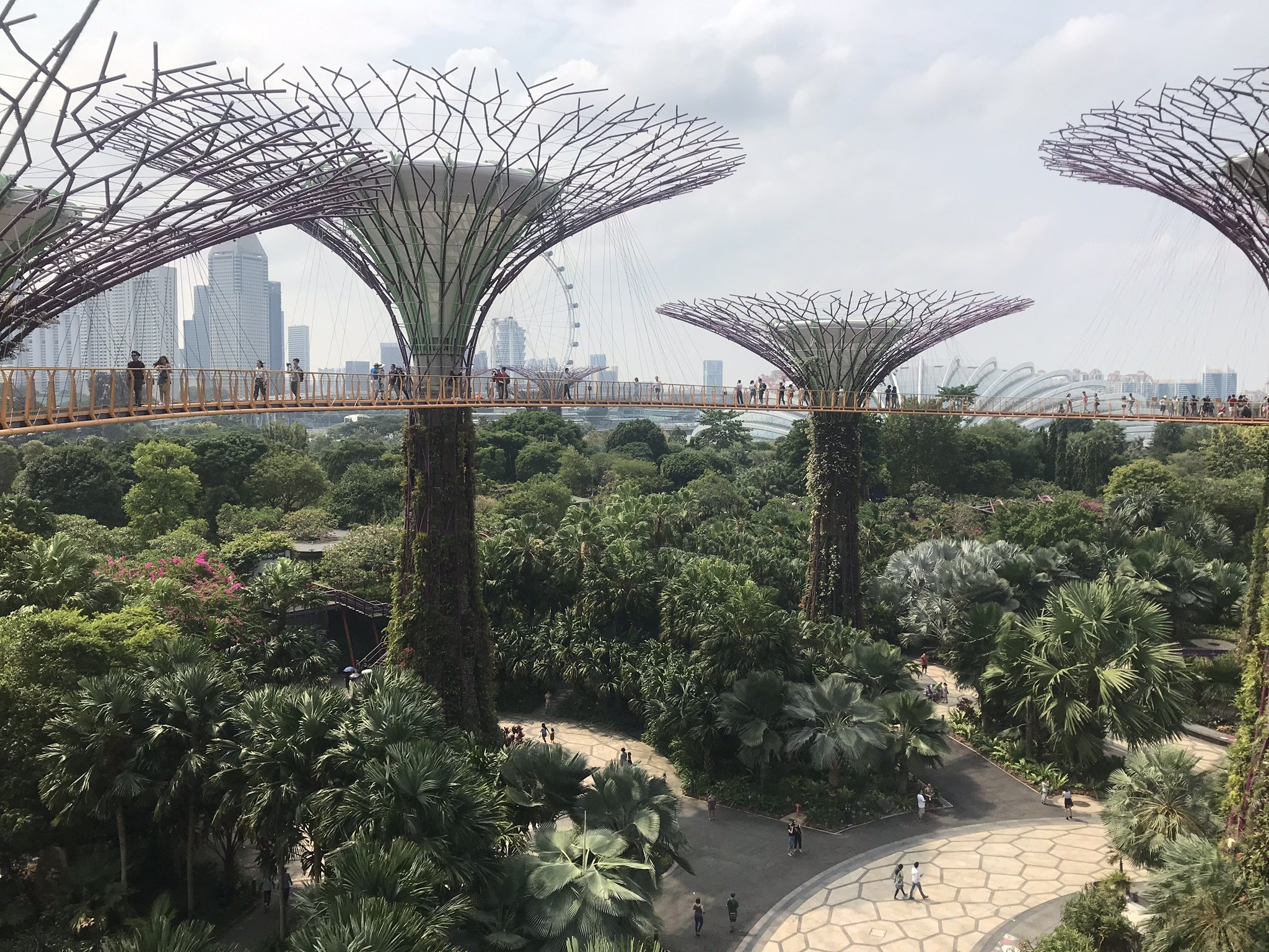 Rooftop walk at Gardens by the Bay
