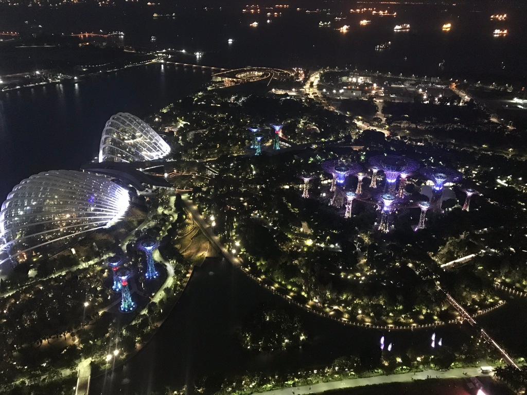 View of Gardens by the Bay light show