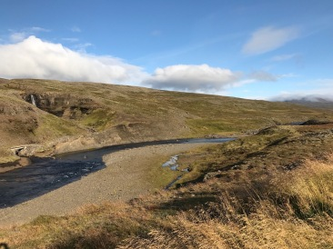 Dry scenery of Iceland