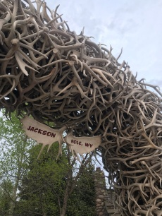 Antler Arch in Jackson, WY